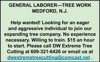 General Labor - Tree Work